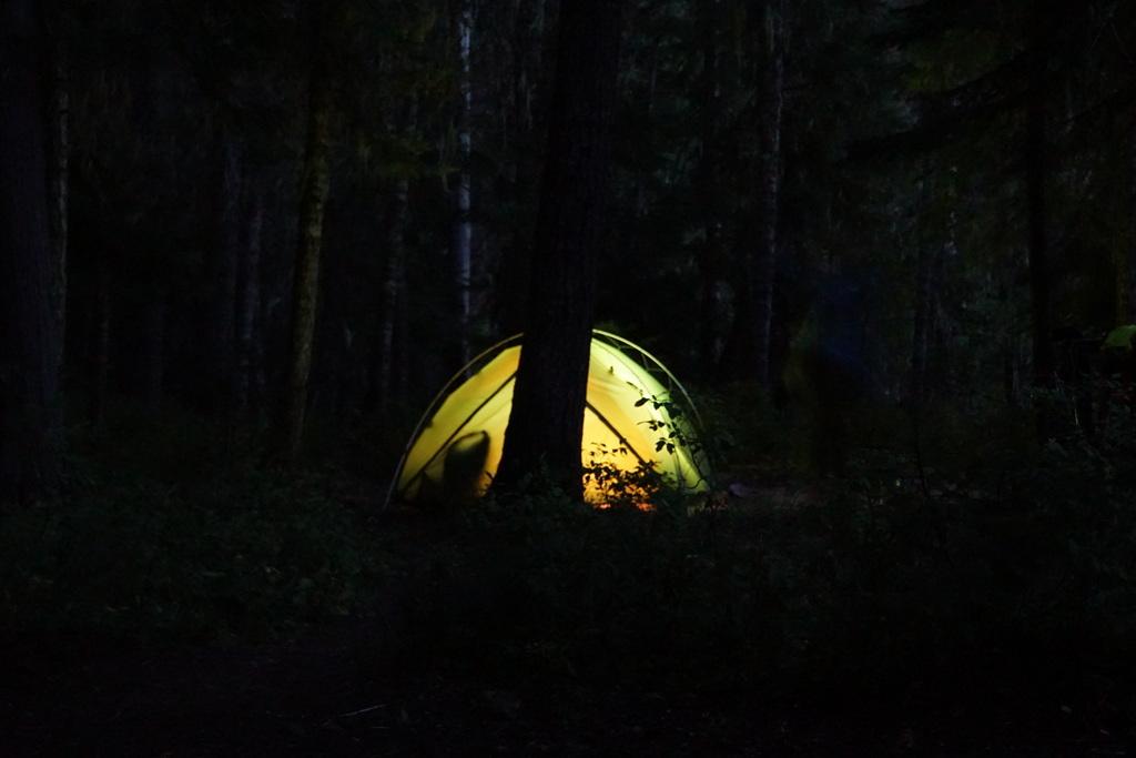 Gruselige Geräusche im einsamen dunklen Wald