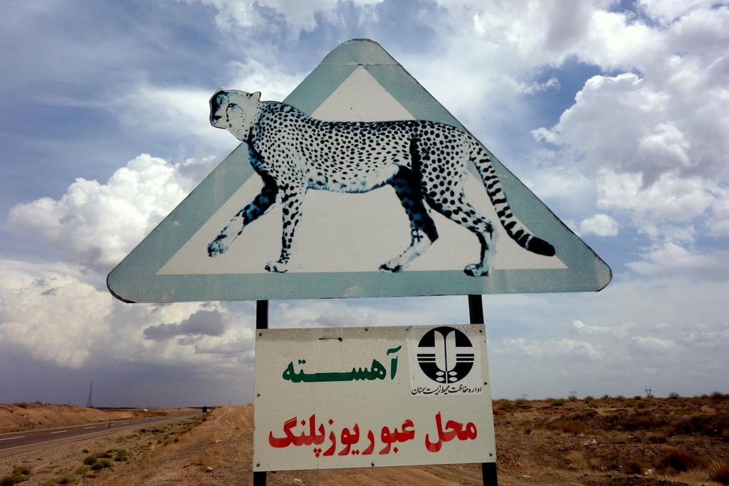 Hier ist der persische Leopard heimisch. Alle zwei Kilometer wird vor ihm gewarnt. Wir waren uns nicht sicher, ob wir mit unseren mikrigen 11 Stundenkilometern schon seinen Jagdreflex auslösen würden...